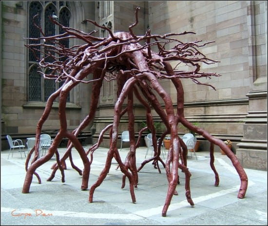 The Trinity Root at September 11 Memorial