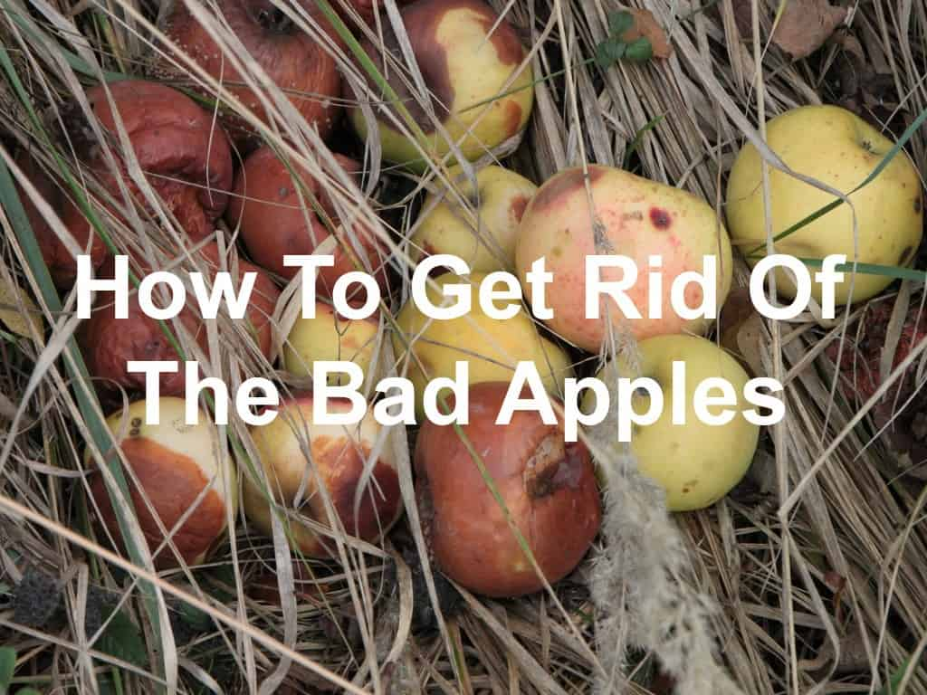 Bad apples spoil the bunch