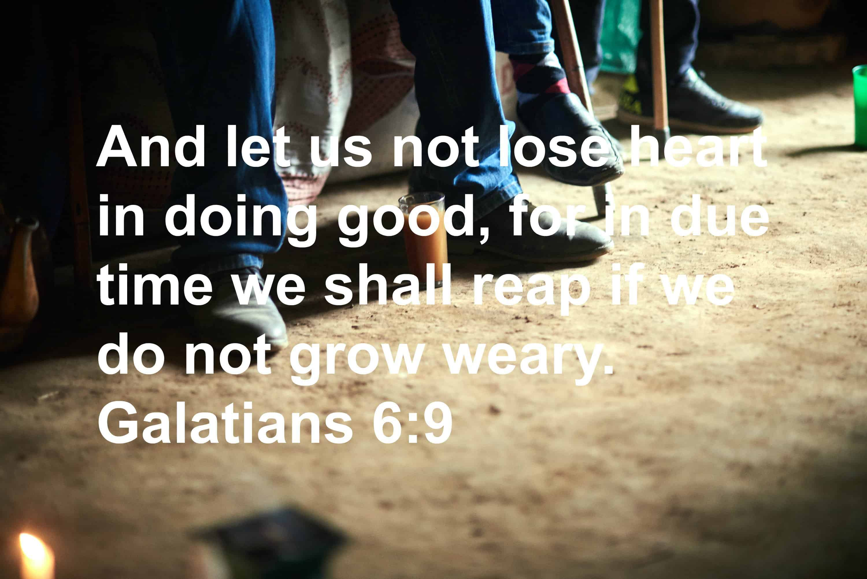 And let us not lose heart in doing good, for in due time we shall reap if we do not grow weary. – Galatians 6:9