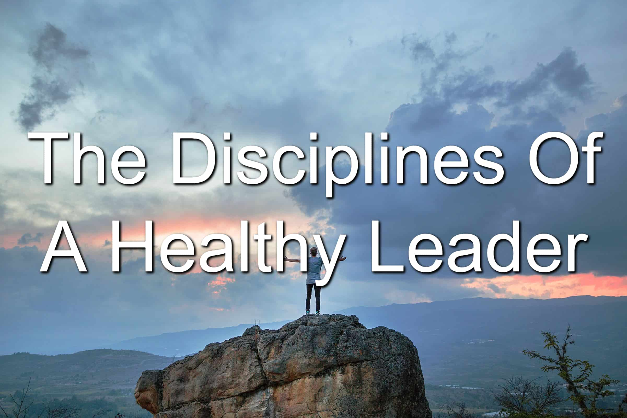 What disciplines does a healthy leader have?
